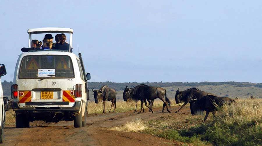 Kenia Esencial